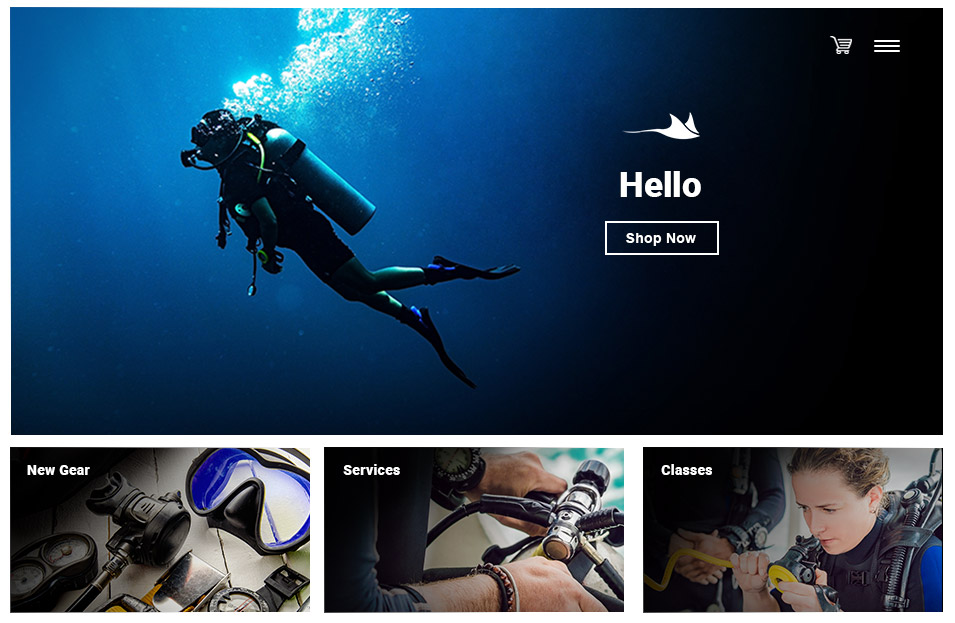 Dive Shop POS | eCommerce Integration