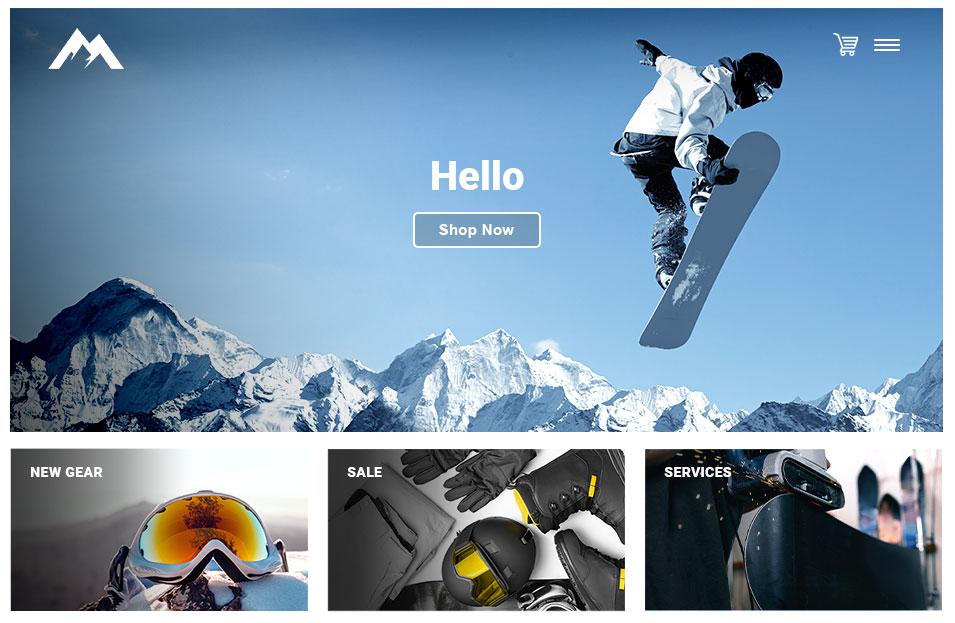 Ski shop POS   eCommerce Integration